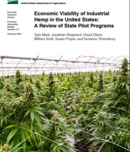 Cover photo for USDA Releases Hemp Economic Viability Report